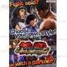 Tekken Tag Tournament 2 Unlimited Arcade Brochure
